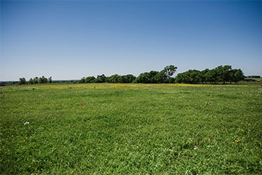 10 acres in south Waxahachie