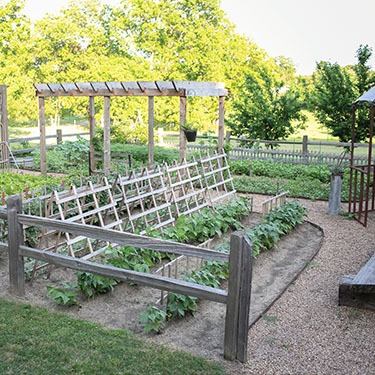 trellis-armstrong-garden